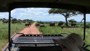 Tanzania safari herd by truck