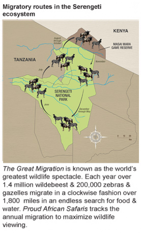 The great migration map - Tanzania Safaris at Proud African Safaris
