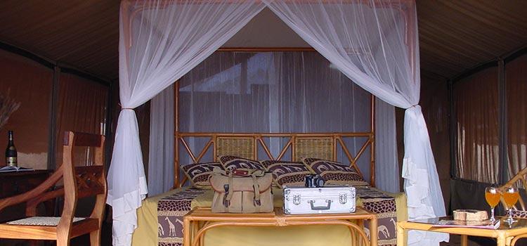 Kikot tented camp, Tarangire National Park Safari - Proud African Safaris