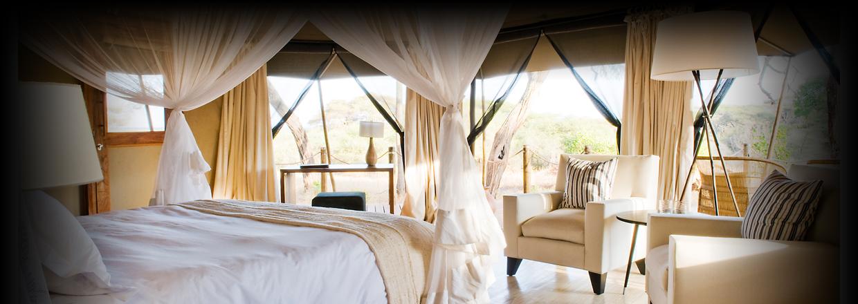 Tarangire National Park Sanctury Swala at Proud African Safaris